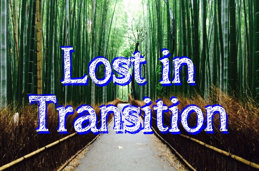 Post-Cover_06 Lost in Transition